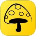 蘑菇丁安卓版v2.2.1